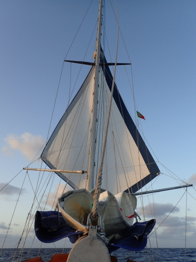 Poled out twin headsails