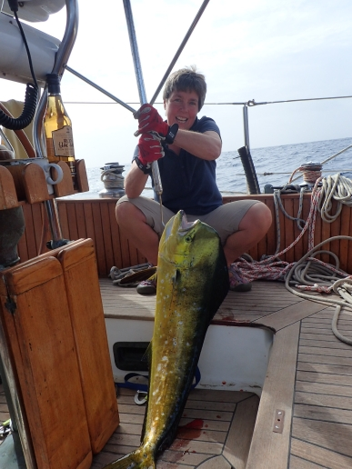 Our first fish - mahi mahi. It was big.