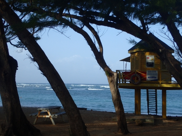 Nice place to be a lifeguard