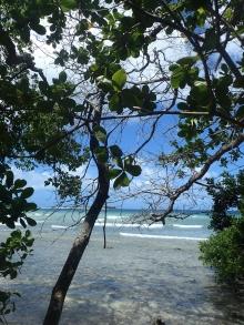 Reef off Caricou