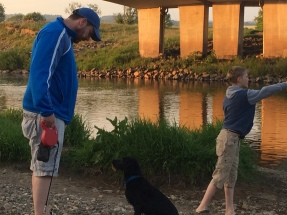 Early evening puppy training