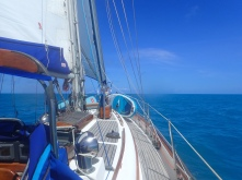 Lovely gentle sail from St Georges to Hamilton