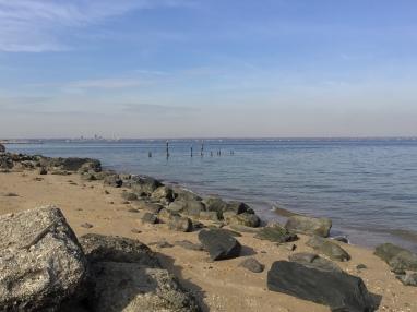 Long Island beach walk