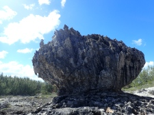 Volcanic bump