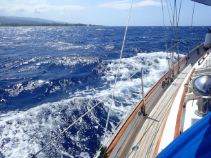 7 knots