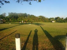 Cricket pitch with shadows