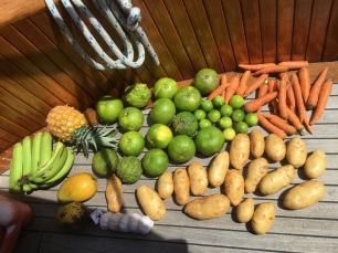 washing fruit and veg in Jamaica
