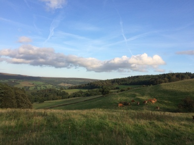 Evening stroll from Beeley