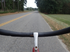View from my bike cycling back from the hardware store