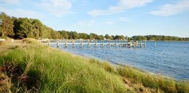 Deltaville shoreline
